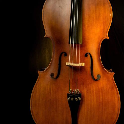 violinmaru